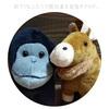 はじめて当ブログにお越しいただいた方へ。訳アリ事情のまとめ。