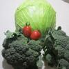 ありがたい野菜たちの話。