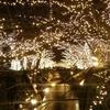 中目黒 イルミネーション 「NAKAMEGURO JEWEL DOME」が開始!点灯式にはマギーさんも。