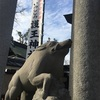 2019年の護王神社はイノシシがいっぱい!