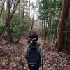 【大阪】竜王山で磐座に出会う