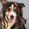 【ドイツ髪事情】黒人女性はみんなカツラをかぶっている?