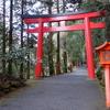 箱根神社と明治神宮へ一人旅に行ってきた