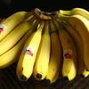 199円でバナナ~どうなる日経平均~