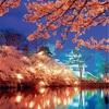 地元民が語る!春に行きたい新潟県上越地区のオススメ観光スポットランキングベスト5
