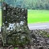 素朴な石造美術がてんこもり 小武寺(おだけじ)の境内にまつられるコウシンさま