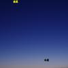 厳しい寒さに輝く 宵の明星と水星 2月8日