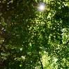 スピリチュアル的な太陽の光のエネルギーの効果