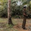 スリランカのテロの実行犯に、同国有数の資産家の息子