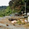 小海線:松原湖駅 (まつばらこ)