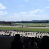 初めての競馬体験