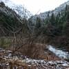 3月半ばの渓流釣り‼
