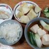葱と豆腐の煮つけと胡瓜の塩漬けとリンゴと焼き餅