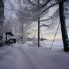 クリームのような雪