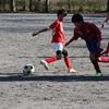 第34回八千代市オープントーナメント少年サッカー大会(5年生)