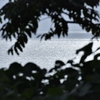 散文夢想「朝もやを吹き流しながら海を渡る風を夢見て、その風が連れ行く波と戯れる日に想いを馳せる」。