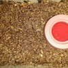 コクワガタの床材交換
