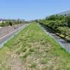 中央帯の空き地2(南多摩尾根幹線道路/ みなみたまおねかんせんどうろ)