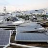 台風・竜巻・豪雨で破壊される危険で環境も破壊する商品