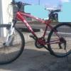 盗まれた自転車を探し続ける毎日。そしてパンクした別の自転車。