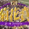 【菊花賞2018 回顧】2600mからの瞬発力勝負