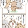 第45話「猫のお散歩 その2」猫漫画
