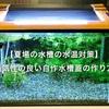 【夏場の水槽の水温対策】通気性の良い自作水槽蓋の作り方