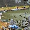 西ノ谷池(静岡県浜北)