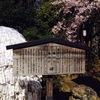 満身創痍フリーターの京都旅行3『意外とこわくない 安井金毘羅宮』