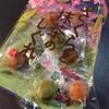 カルディ(KALDI)桜のお菓子達まとめ♪2019(ほぼ)全レビュー!【その5】