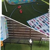 庭でプールとBBQを同時に楽しむ