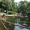 勉強の息抜きに都内の本格的なアスレチック 平和の森公園フィールドアスレチックに行ってみました