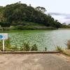 東光寺池(和歌山県海南)