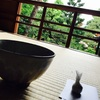 金沢旅行(4)建築アート好きは必見!鈴木大拙館と長町武家屋敷跡【2日目・前編】
