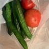 野菜を頂きました。