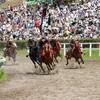 競走馬の屠畜、安楽死処分を考える。
