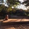 【Pijat Bali Teratai】の看板作り