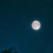 「月が綺麗だね」と言ったら、、、