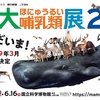 特別展「大哺乳類展」国立科学博物館 その三