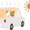 暑い夏の熱中症予防対策