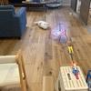 ズボラママの床掃除はこれ一択