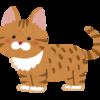 【書評】金言ねこあつめ。可愛い猫の三コマ漫画でポジティブになれる
