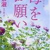 申京淑(シン・ギョンスク)著『母をお願い』は、絶滅ちかい「おふくろ」の物語