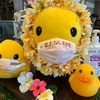 横浜天然温泉SPA EAS(スパ イアス)のロウリュウイベントを満喫!