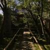 京のかたな展と京都旅(観光雑記)