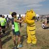 【レースレポ】板橋Cityマラソン その2