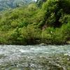 大きな川の支流へ