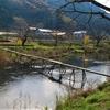 2011年の東北 岩手県住田町の流れ橋「松日橋」