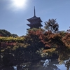 京都旅行記⑥東寺~西本願寺