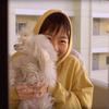 こんな時は家で映画でも〜「ほえる犬は噛まない」